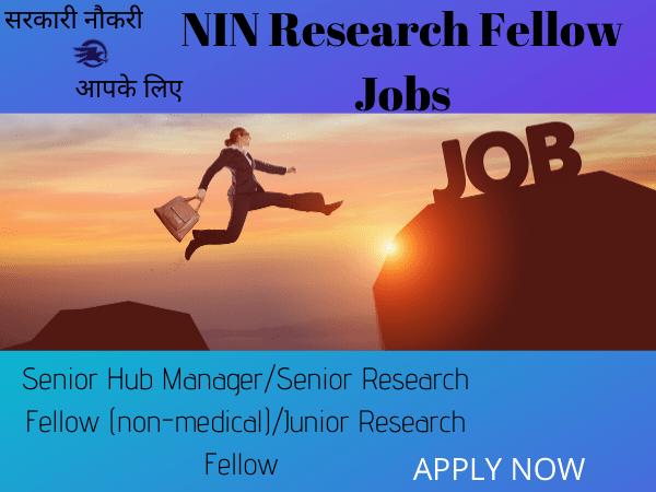 NIN Research Fellow Jobs