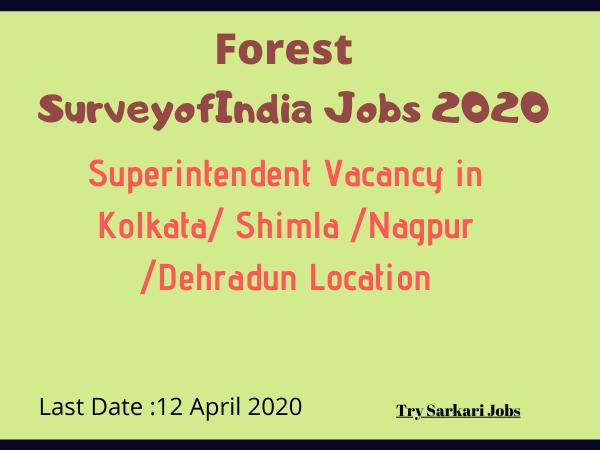 Forest SurveyofIndia Jobs 2020