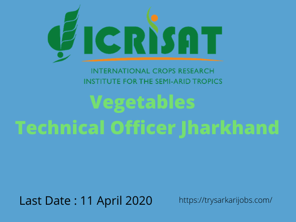 Vegetables Technical Officer Jharkhand