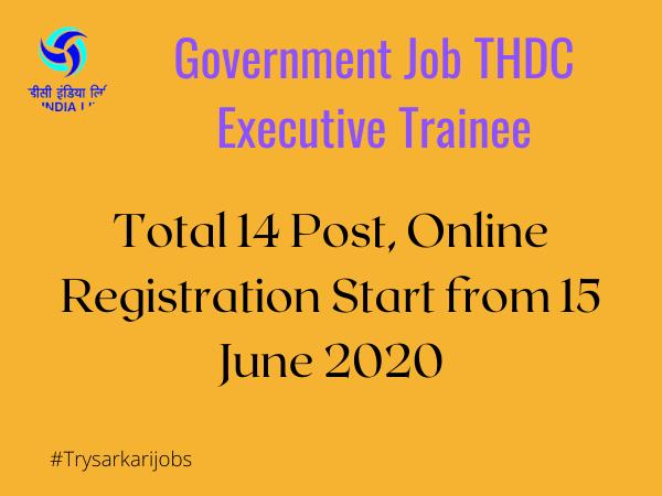 Government Job THDC Executive