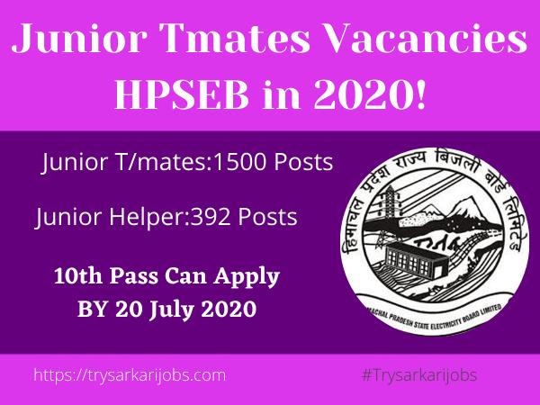 Junior Tmates Vacancies HPSEB